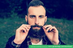 groomed airplant beard