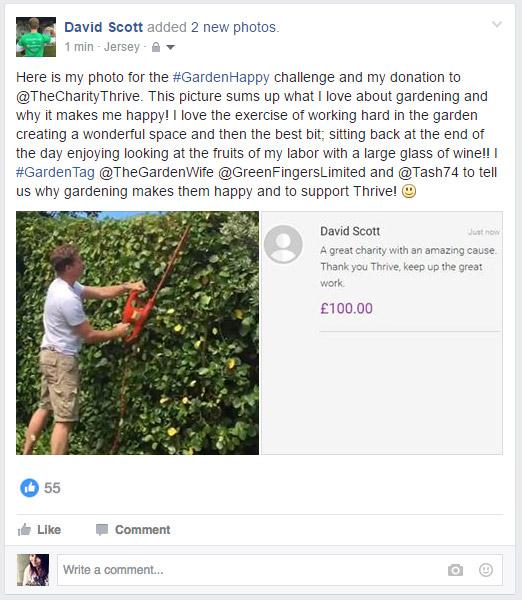 David_FB_example