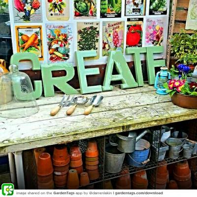 Garden DIY: 6 top ideas for creative planting
