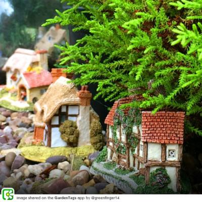 DIY: Fairy Gardens!