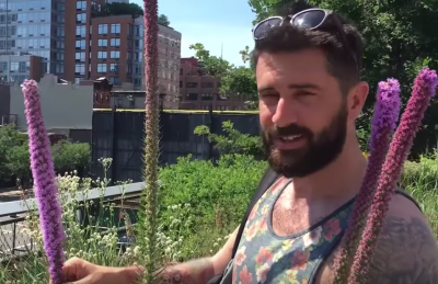 Video Tour of New York's High Line – Garden in the Sky