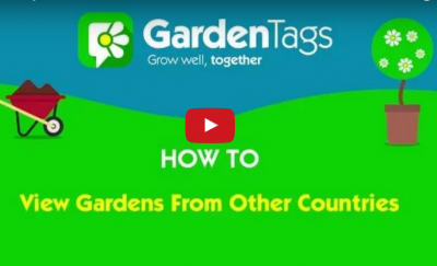 Video – How to view gardens from across the globe