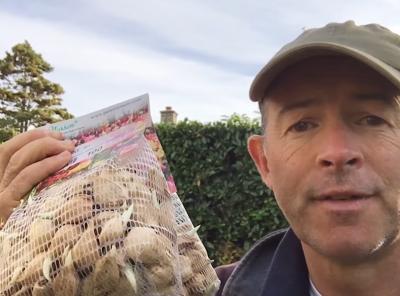 Video – How To Plant Dwarf Iris