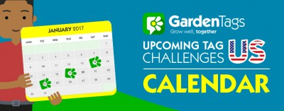 US Calendar: Januarys tag challenges