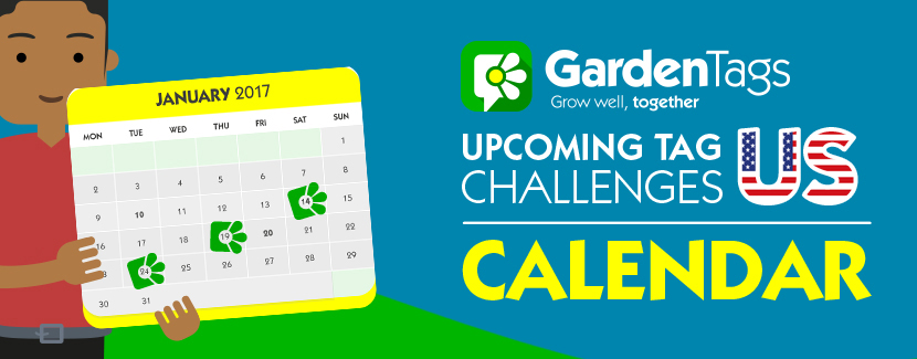 US Calendar: Januarys tag challenges