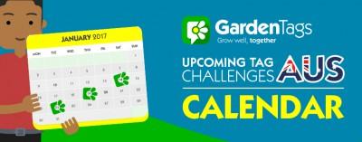 AUS Calendar: Januarys tag challenges