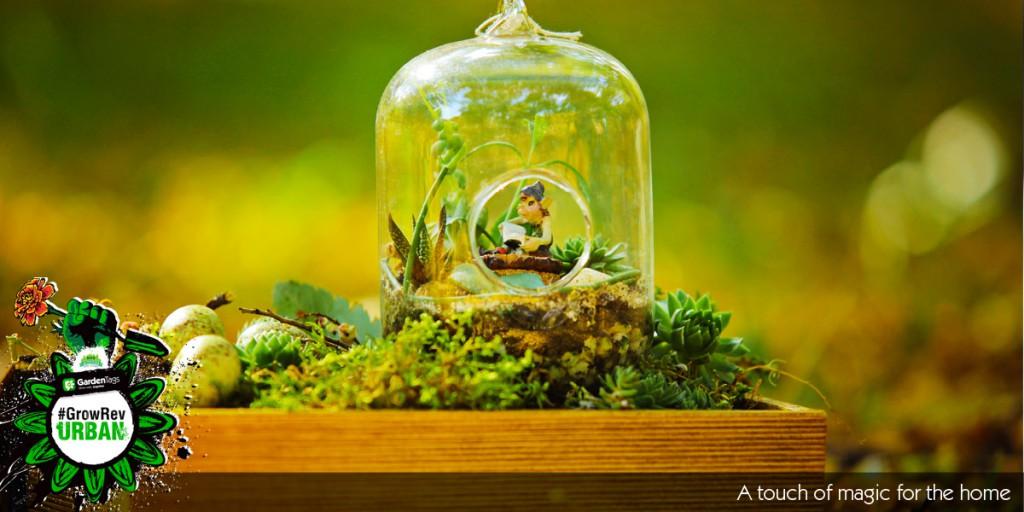 Kids Gardening – Indoor Fairy Gardens