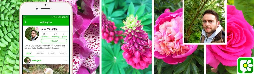GrowRev - URBAN - The Urban Gardening Revolution - Garden Gadgets - Jack Wallington
