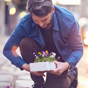 Square Foot Gardening – The Pothole Method