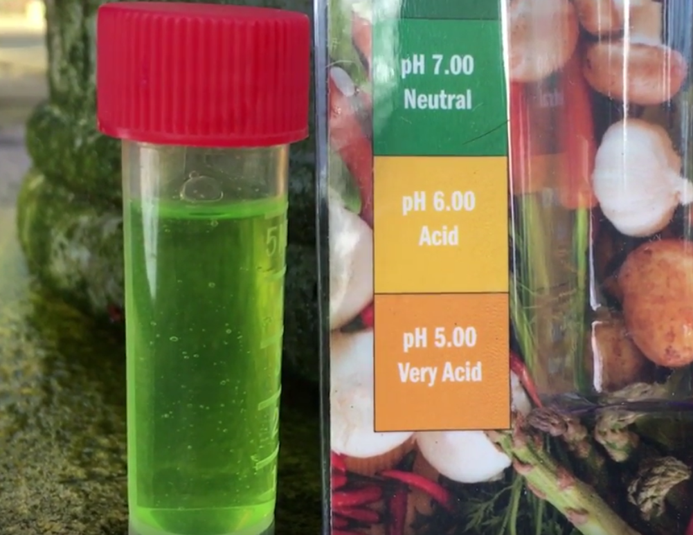 Soil PH – a simple video guide