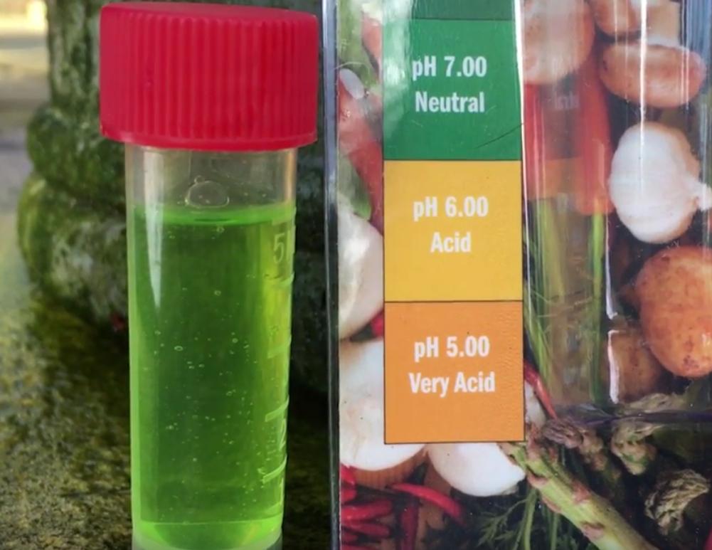 Soil PH – a simple video guide