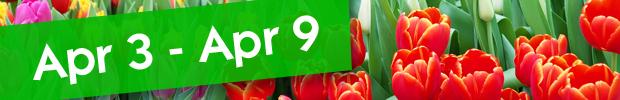 UK Calendar - March