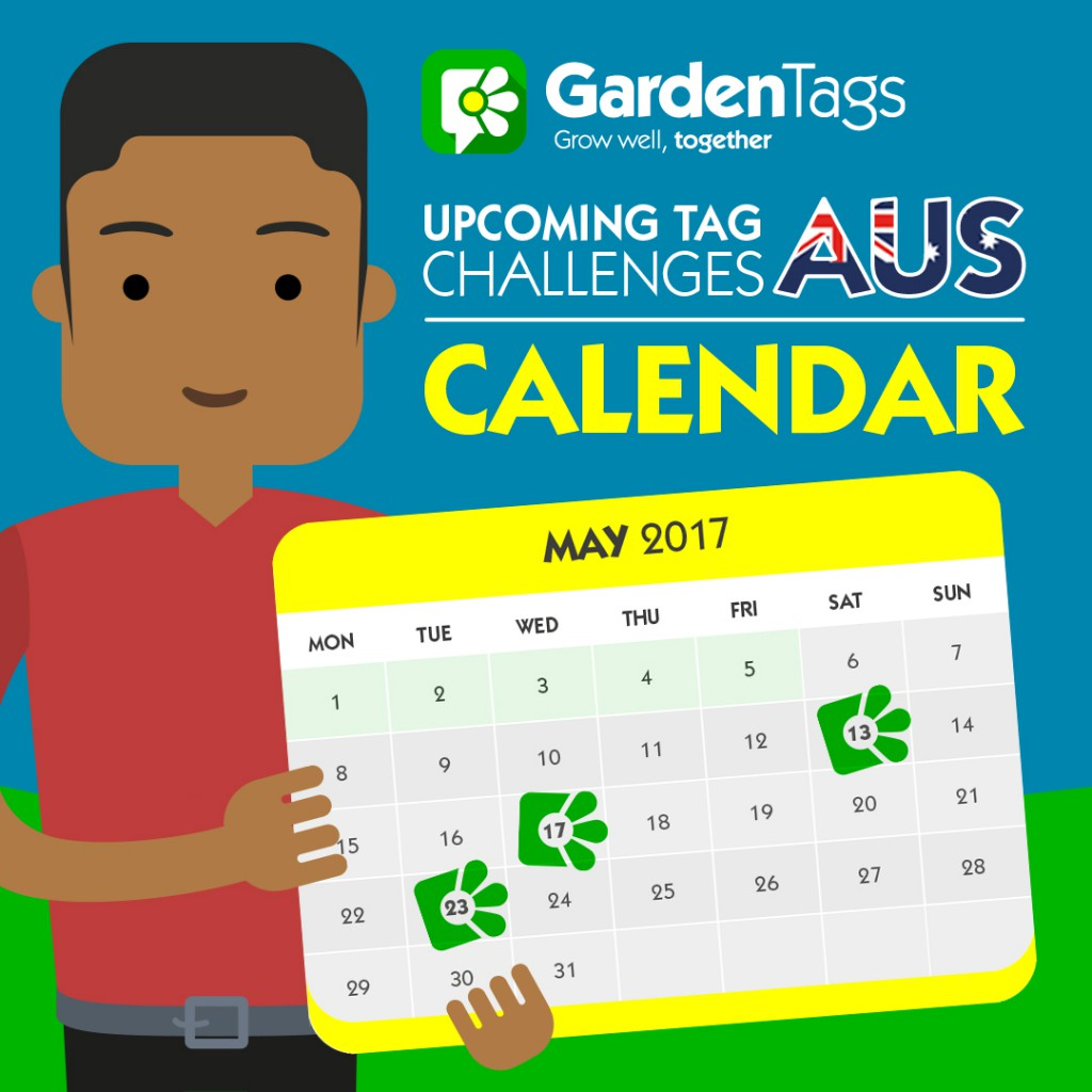 AUS Calendar: May Tag Challenges