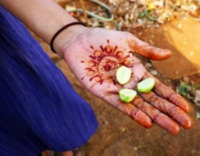 Experiencing India as an Urban Farmer