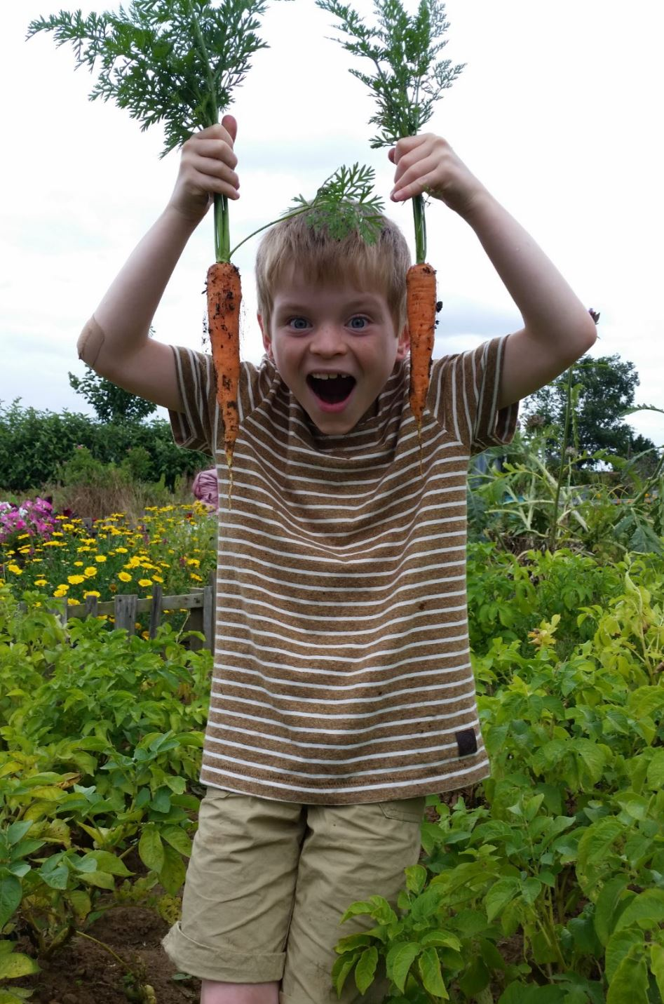 How to make a story garden with your children