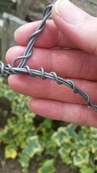 allotment wire