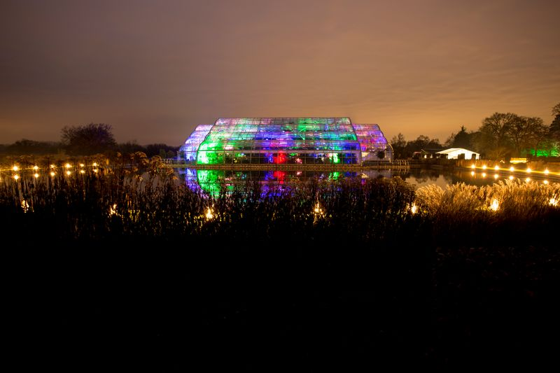 RHS Wisley illuminated © RHS Paul Debois