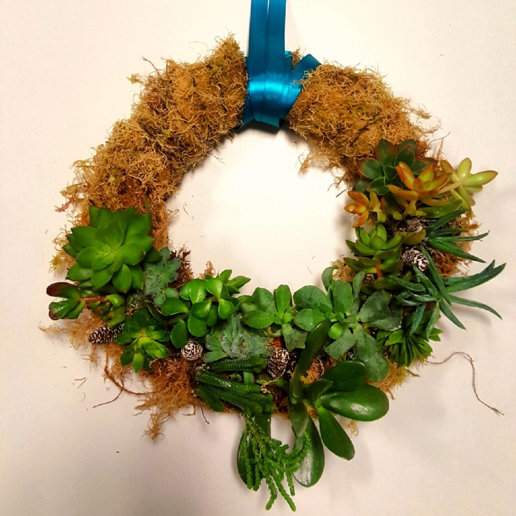 Make a succulent wreath – 10 step picture guide